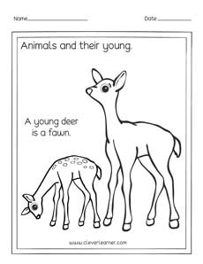 Printables Of Animals Pre Forest 1 Free And Their Babies moreover  also Kangaroo Facts  Worksheets  Habitat  Species   t For Kids likewise English Exercises  Baby Animals moreover Animals and Their Young 2 worksheet further Farm Animals and Their Babies Worksheet   Turtle Diary besides  likewise Animals at EnchantedLearning as well Easy Free Printable Animal Dot to dot Worksheets additionally Animals and their babies by renosparks   Teaching Resources furthermore Animals and the names of their young ones worksheets for pres as well Crafts Actvities and Worksheets for Pre Toddler and Kindergarten also Animals and their Young Ones   TutorVista also Animals and Their Young worksheets   Zvieratá   Animal worksheets moreover Frog Picture For Kids Frogs Amazing Animal Books Young Worksheet On besides . on animals and young ones worksheet