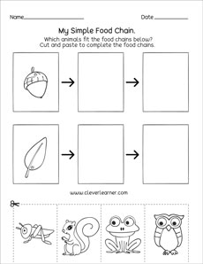 graphic about Food Chain Printable Activities referred to as Meals chain printables and worksheets for kindergarten and