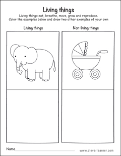 living and non living things worksheets for preschools. Black Bedroom Furniture Sets. Home Design Ideas