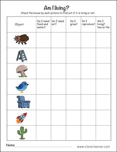 living and nonliving things worksheets for preschools preschool living things science kindergarten science living things