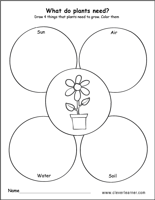 What plants need to grow worksheets for preschools – Plant Needs Worksheet