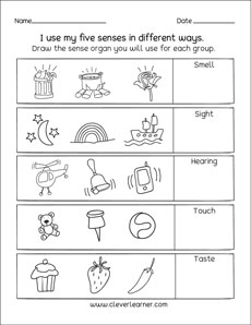 the five senses worksheets for preschools. Black Bedroom Furniture Sets. Home Design Ideas