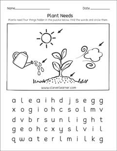 what plants need to grow worksheets for preschools. Black Bedroom Furniture Sets. Home Design Ideas